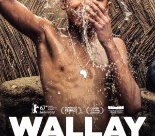 Portail culturel - CINÉ PLEIN AIR (GRATUIT) : WALLAY - à voir en famille